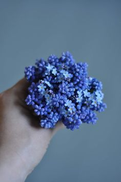 Mini bouquet/Vadelmia ja Pioneja Cut Flowers, Blueberry, Bouquet, Diy Projects, Gardening, Fruit, Mini, Interior, Floral