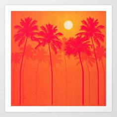 Bright sunny day distorts towering palm trees<br/> <br/> palms, palmetto, palm trees, pink...