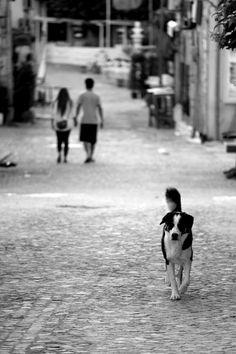 Morning Stroll @ Cesme, Turkey