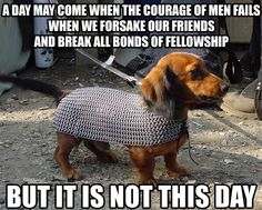 Behold the inspirational majesty of Dachshunds of Middle Earth.