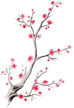 Cherry blossom branch mazing в 2019 г. cherry blossom art, a Tree Branch Tattoo, Blossom Tree Tattoo, Blossom Trees, Cherry Blossom Drawing, Sakura Cherry Blossom, Cherry Blossom Outline, Cherry Tree Tattoos, Tree Drawing Simple, Japanese Flowers