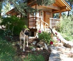 TenThousand Waves, SantaFe - America's Best Dog-Friendly Hotels | Travel + Leisure