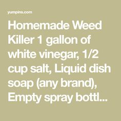 Homemade Weed Killer 1 gallon of white vinegar, 1/2 cup salt, Liquid dish soap (any brand), Empty spray bottle. Put salt in the empty spray bottle and fill it the…