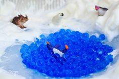 Ася Ванякина. Играем в снег. http://ozero-chad.livejournal.com/793113.html