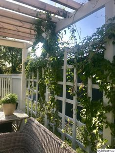 Free Standing Pergola With Curtains - Pergola Terrasse Appartement - How To Build A Pergola Over Garage Door - - Vinyl Pergola, Garage Pergola, Pergola Curtains, Pergola Swing, Wooden Pergola, Backyard Pergola, Pergola Shade, Pergola Plans, Backyard Landscaping