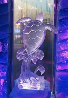 sea turtle ice sculpture at the 2011 OC Fair Ice Museum in Costa ...