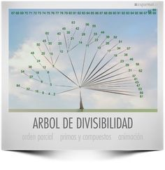 Matemática, espíritu y arte: Árbol de la Divisibilidad