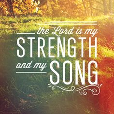 """The LORD is my strength and my song; He has become my salvation. This is my God, and I will praise Him, my father's God, and I will exalt Him."" Exodus 15:2"