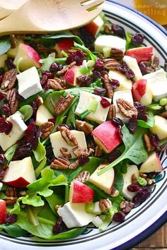 This Apple Brie Salad combines the crispness of apples with the creaminess of Brie cheese in a delicious salad that's perfect for winter! - Used blue cheese instead of brie. Easy Salads, Healthy Salads, Summer Salads, Healthy Recipes, Easy Recipes, Ensalada Thai, Balsamic Vinaigrette Recipe, Balsamic Salad Recipes, Recipes