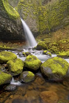 Ponytail Falls, Columbia River Gorge, Oregon