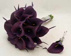 www.becketttravel.com eggplant calla lilies