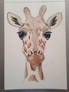 Visage de girafe a5 de dessin à l'aide du crayon et encre. Pièce originale sur papier d'aquarelle gsm 185