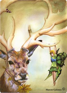 ilustración cuento adhara