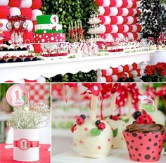 Ladybug themed birthday party via Kara's Party Ideas KarasPartyIdeas.com #ladybugparty #karaspartyideas #ladybugs #eventplanning (17)
