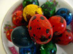 Tiny Easter Quail Eggs