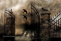 """Original fine art photograph taken by Kathy Fornal - No copyright watermark on photo you order.  Title: Surreal Dark Haunting Gothic Gate With Ravens  Size: 8"""" x 12"""" with thin border for framing and matting"""