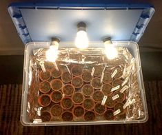 Inexpensive DIY Seed Sarting Kit - Plants thrive due to the temp & light. Will definitely have to try this. | Instructables.com  04.21.13