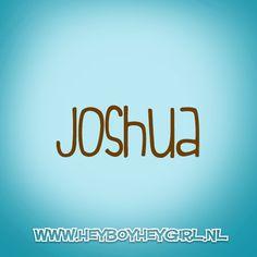 Joshua (Voor meer inspiratie, en unieke geboortekaartjes kijk op www.heyboyheygirl.nl)