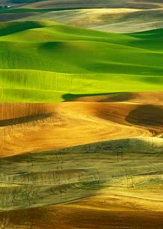 A magical Palouse (north central) photo.  As beautiful as this is, it can't compare to being there!