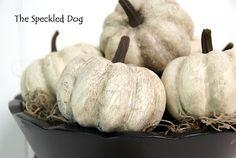 The Speckled Dog: DIY - Faux Antiqued Pumpkins