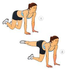 Circuit 2: Fire Hydrants  Start on all fours, knees directly under your hips, and hands directly below your shoulders. Keep your back and neck straight and look forward. Keeping your knee bent, raise your right leg out to the side, until your thigh is parallel to the floor. Keep your pelvis stable. Slowly lower your leg back to starting position.