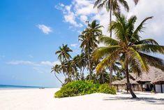 Zanzibar i Tanzania – indywidualne wycieczki, wakacje i wczasy - Feel The Travel Tanzania, Jeep, Scenery, Tours, Beach, Water, Outdoor, Gripe Water, Outdoors