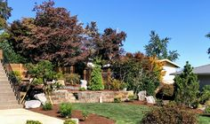 In many ways this was a typical Ross NW Watergardens project. The client wanted a landscape that was: