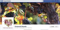 Vineyard Brands on Facebook