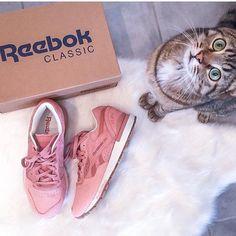 "Reebok Classic France (@reebokclassicfr) no Instagram: ""Et toi, c'est quoi ta paire de Reebok aujourd'hui ? Tag @reebokclassicfr sur ta photo histoire…"""