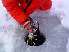 1000 images about ice fishing on pinterest ice fishing for Lake trout ice fishing lures