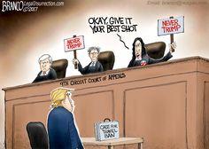 Political Cartoon: The Nutty 9th Circuit