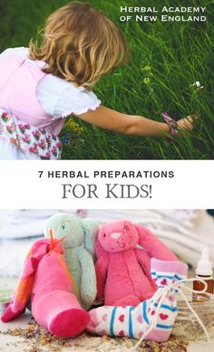 7 Herbal Preparations to make with your Kids