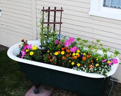 i've always wanted bathtub with flowers in it