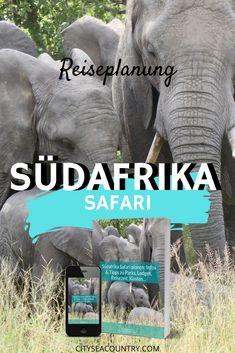 Du möchtest eine Safari in Südafrika planen oder dich darüber informieren? Du suchst nach Tipps? Im Blogpost erfährst du alles, was du über eine Südafrika Safari wissen musst + PDF zum kostenlosen Download.  #afrikasafari #südafrika #safari Reisen In Europa, Africa Travel, Namibia, Elephant, Nationalparks, Roadtrip, Vegan, Lodges, Animals