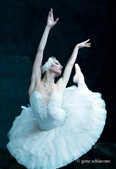 "The Magic of ""the crop"" for dance photography by photographer Gene Schiavone. Dancer: Oksana Skorik (Mariinsky) in Swan Lake Ballerina Barbie, Ballerina Dancing, Little Ballerina, Ballet Dancers, Dance Photos, Dance Pictures, Australian Ballet, Pretty Ballerinas, Russian Ballet"
