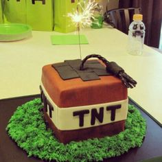 How awesome is this?! Minecraft Birthday Party....