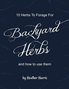 Imagine stocking your natural medicine cabinet without spending any money online or at the health food stores. If you are traveling, you can have natural helps for bumps, bruises, scrapes and more just by taking a relaxing walk. There's no need to get complicated, either. These 10 herbs will get you started and can do a lot of work for you. Best of all, many are right in your backyard, just waiting for you to find them!