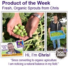 #organic #natureandmore #sprouts #brusselssprouts #code139 #chris #soilhero