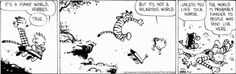 It's a funny world, Hobbes
