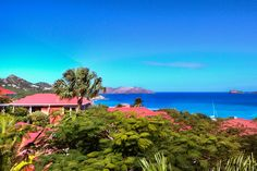 find the best st barts packages for your holiday in Saint Barth