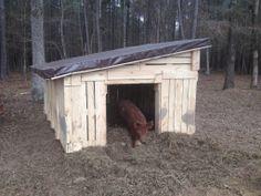 Pig House