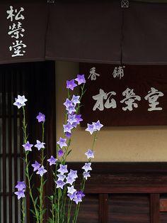 Classic Kyoto Incense shop SHOEIDO Located in Higashiyama, Kyoto.