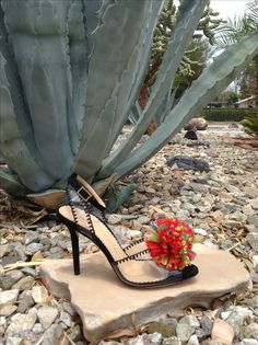 Charlotte Olympia Pom Pom shoe. Rents at 10% of retail. Free shipping USA