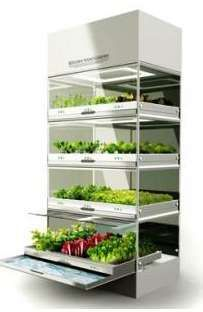 Hydroponic Indoor Gardens - The Hyundai Kitchen Nano Lets Users Grow Their Own O. - Hydroponic Indoor Gardens – The Hyundai Kitchen Nano Lets Users Grow Their Own Organic Veggies (G - Aquaponics System, Hydroponic Farming, Hydroponic Growing, Hydroponic Solution, Aquaponics Greenhouse, Aquaponics Diy, Indoor Vegetable Gardening, Organic Gardening, Gardening Tips