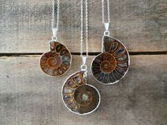 $23.00 USD| EliteStone | Handmade | Silver-tone brass necklace with fossil ammonite pendant, in agate hues with iridescence.