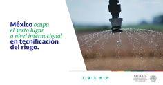 México ocupa el sexto lugar a nivel internacional en tecnificación del riego. SAGARPA SAGARPAMX