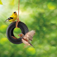 Quand les jours froids et sombres arrivent, les oiseaux qui n'ont pas migré se retrouvent dépourvus de nourriture ! Accrocher une mangeoire à oiseaux a toujours sauvé des dizaines d'oiseaux, et a toujours aussi été très agréable à observer ! Avec la mangeoire en forme de pneu, faites un joli cadeau pour l'hiver !