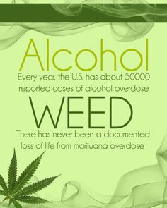 Alcohol vs Weed  ( marijuana cannabis)