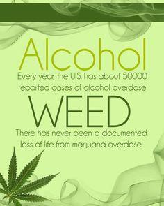 Alcohol vs Weed ( marijuana cannabis)