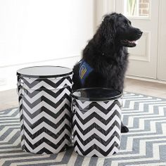 Chevron Stripe Pet Food Canister by Ballard Designs